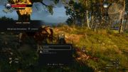 The Witcher 3 Tiny Text