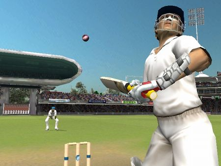 Brian Lara International Cricket 2007 - 48182