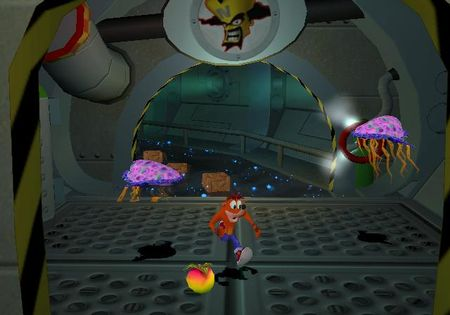Crash Bandicoot: The Wrath of Cortex - 20767