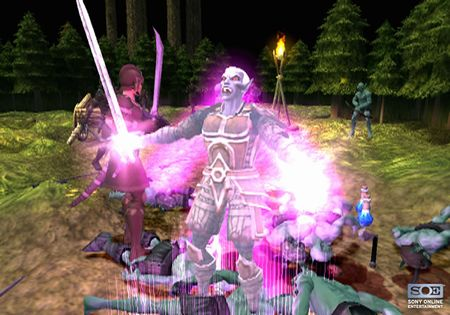Champions of Norrath: Realms of Everquest - 41463