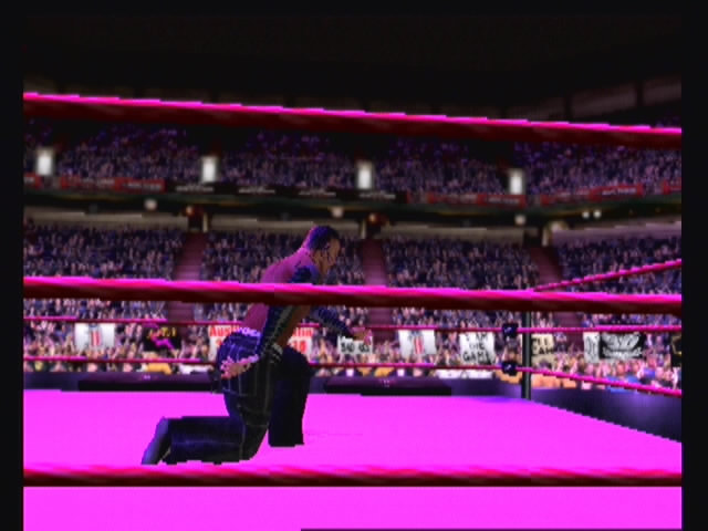 WWF Smackdown: Just Bring It - 22010