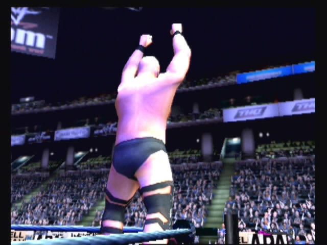 WWF Smackdown: Just Bring It - 22046