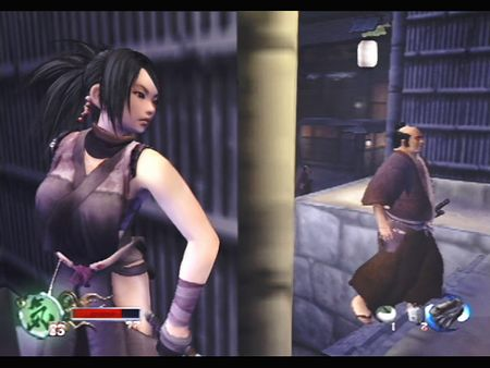 Tenchu: Fatal Shadows - 48048