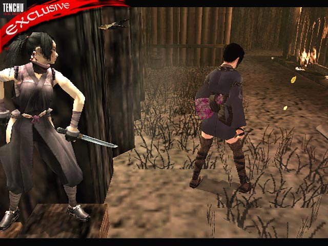 Tenchu: Fatal Shadows - 48060