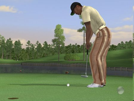 Tiger Woods PGA Tour 2006 - 51096