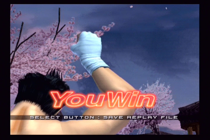 Virtua Fighter 4: Evolution - 38717