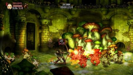Dragon's Crown - 49271