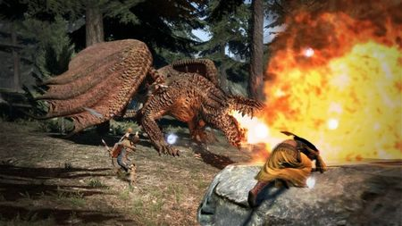 Dragon's Dogma - 46600