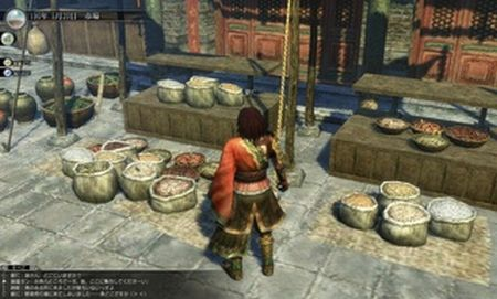 Dynasty Warriors BB - 24503