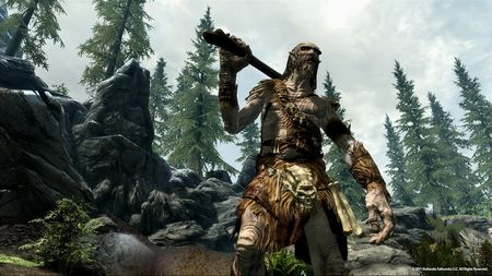 The Elder Scrolls V: Skyrim - 45305