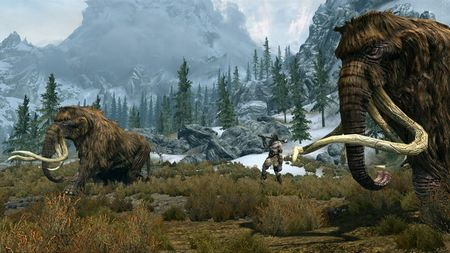 The Elder Scrolls V: Skyrim - 45300