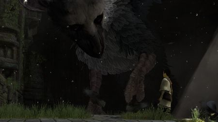 The Last Guardian - 40903