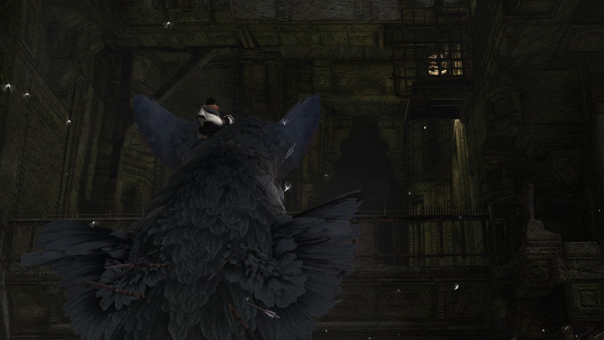 The Last Guardian - 40899