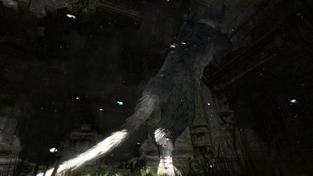 The Last Guardian - 40898