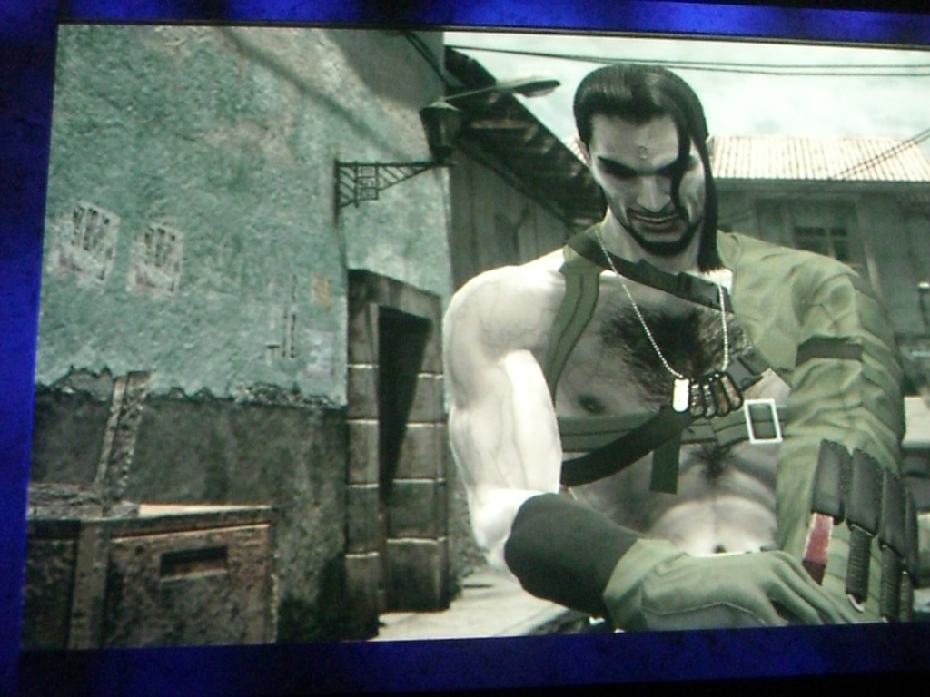 Metal Gear Solid 4: Guns of the Patriots - 24858