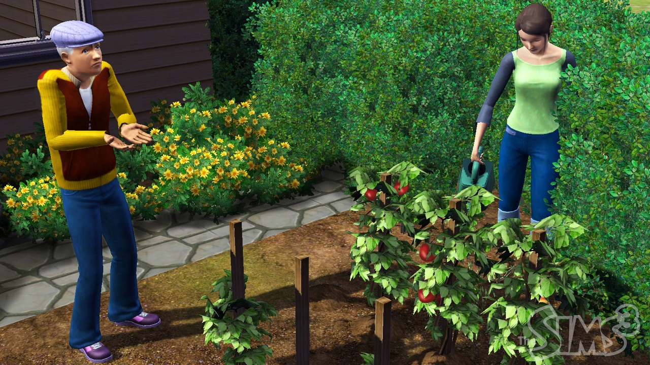 The Sims 3 - 22405