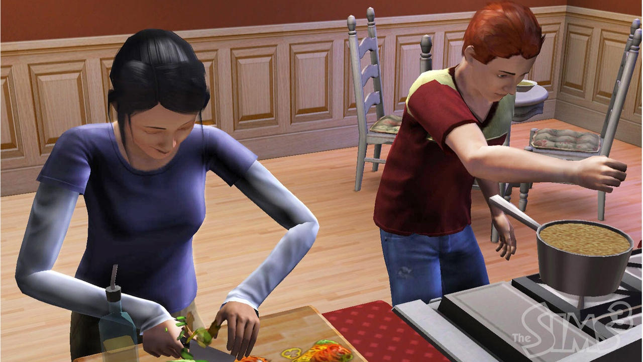 The Sims 3 - 22406