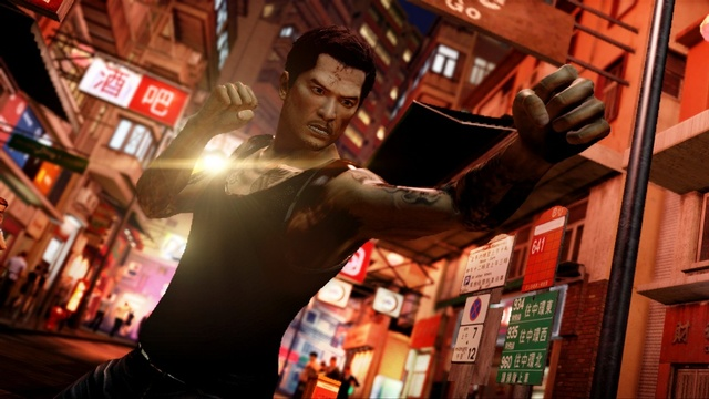 Sleeping Dogs - 47038