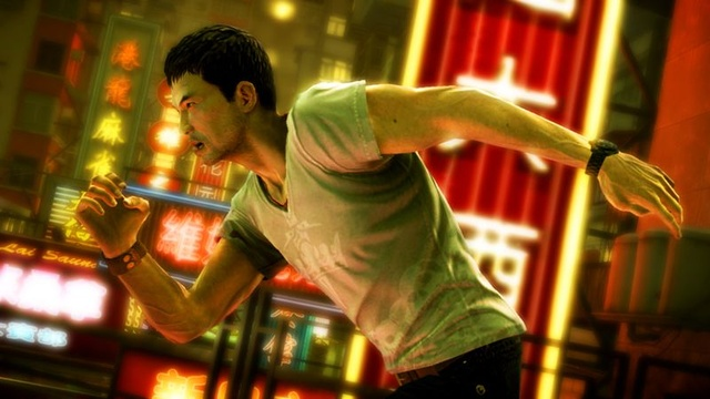 Sleeping Dogs - 47046