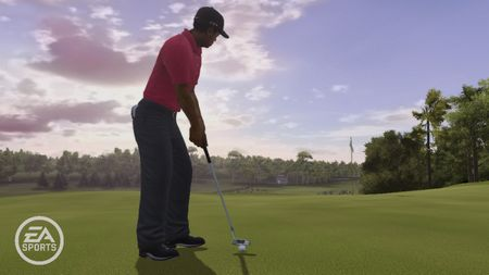 Tiger Woods PGA Tour 10 - 33632