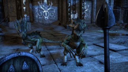 The Elder Scrolls Online: Tamriel Unlimited - 02070
