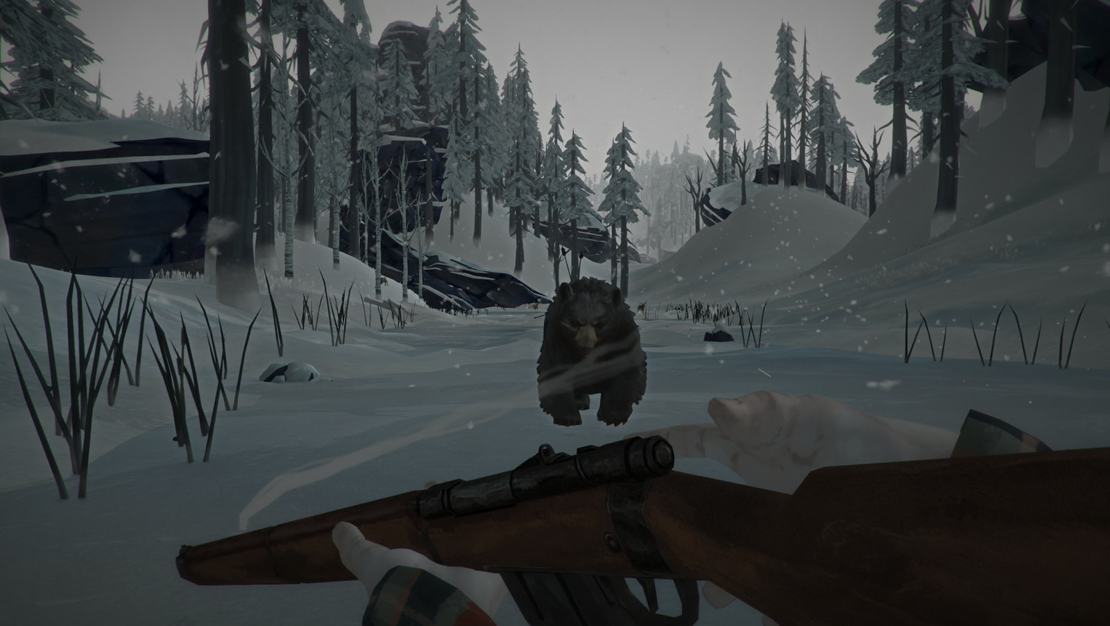 The Long Dark - 24200