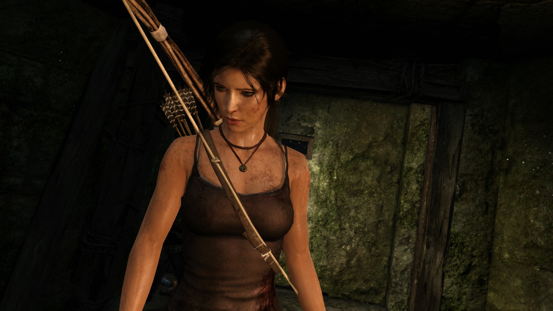 Tomb Raider: Definitive Edition - 00419