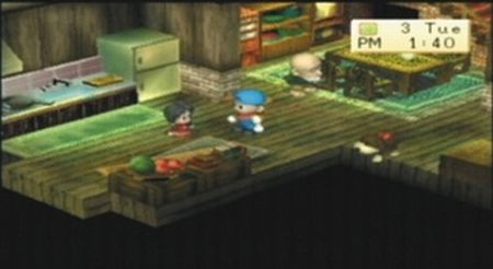 Harvest Moon: Boy & Girl - 08510