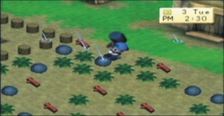 Harvest Moon: Boy & Girl - 08511
