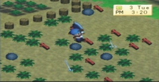 Harvest Moon: Boy & Girl - 08512