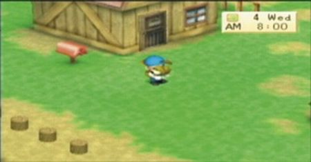 Harvest Moon: Boy & Girl - 08513