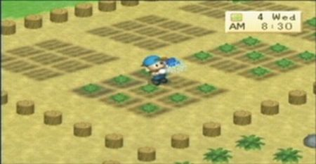 Harvest Moon: Boy & Girl - 08514