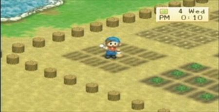 Harvest Moon: Boy & Girl - 08515