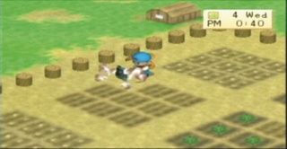 Harvest Moon: Boy & Girl - 08516