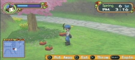 Harvest Moon: Hero of Leaf Valley - 11984
