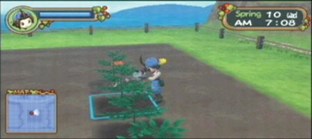 Harvest Moon: Hero of Leaf Valley - 11985