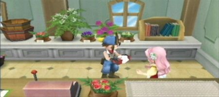 Harvest Moon: Hero of Leaf Valley - 11988