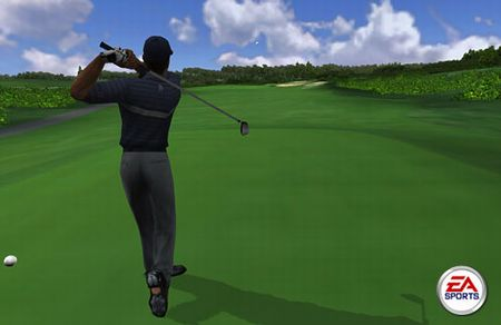 Tiger Woods PGA Tour - 01451