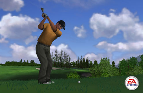 Tiger Woods PGA Tour - 01452