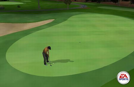 Tiger Woods PGA Tour - 01453