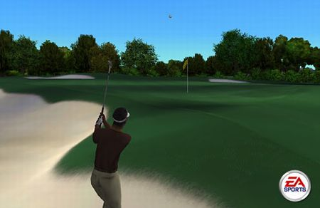 Tiger Woods PGA Tour - 01454