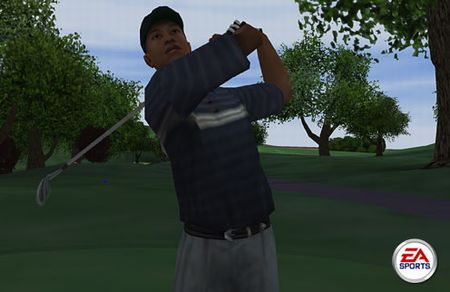 Tiger Woods PGA Tour - 01455
