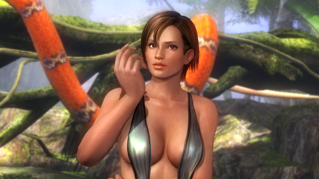 Dead or Alive 5 Plus - 00731