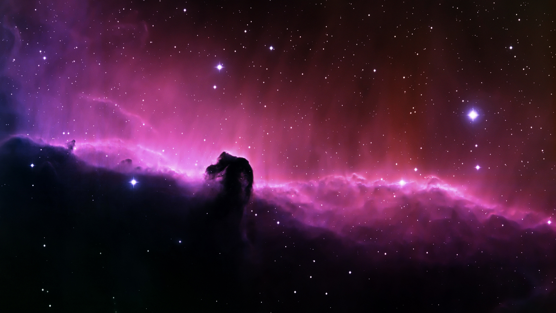 Horsehead Stars Wallpapers
