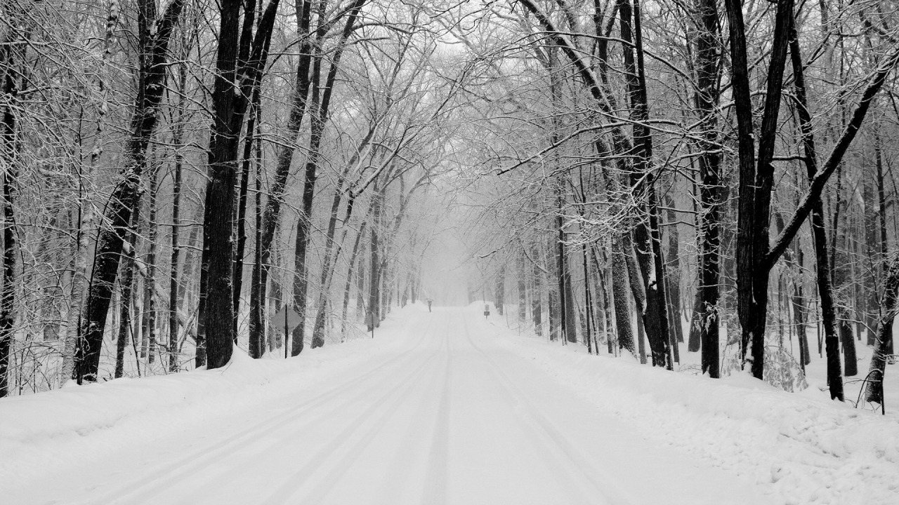 Snowy Road Wallpapers