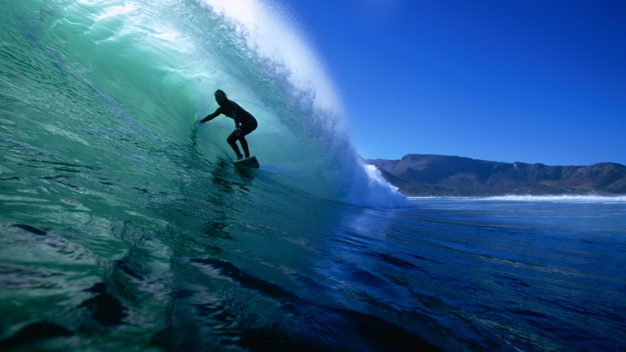 Surf This Wallpapers