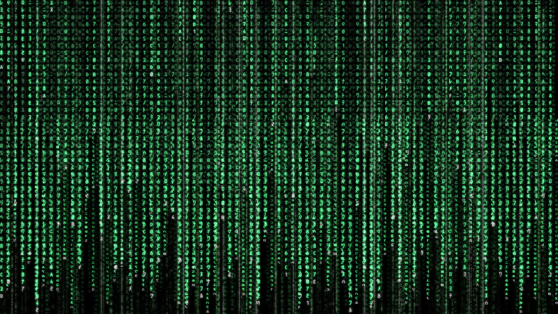 The Matrix Has You Wallpapers