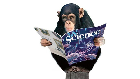 Monkeys Like Science Wallpapers